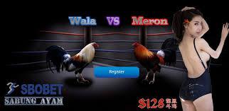 Situs SBOBET Sekarang Menyediakan Judi Sabung Ayam Online